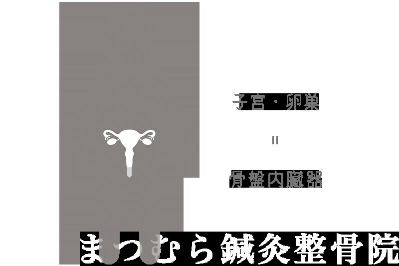 子宮・卵巣は骨盤内臓器